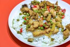 Κάρρυ και ρύζι κοτόπουλου στοκ φωτογραφίες με δικαίωμα ελεύθερης χρήσης
