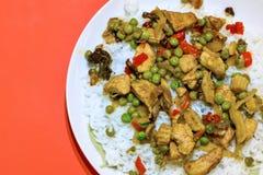 Κάρρυ και ρύζι κοτόπουλου στοκ εικόνες