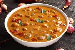 Κάρρυ πιάτο-Ulli του Κεράλα theeyal Στοκ Εικόνες