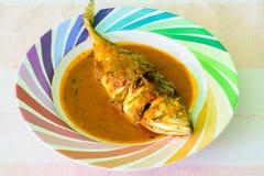 Κάρρυ των πικάντικων ταϊλανδικών τροφίμων σκουμπριών Στοκ Εικόνες