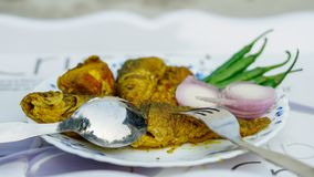 κάρρυ ψαριών, κρεμμύδι, τσίλι σε ένα πιάτο με το άσπρο υπόβαθρο Στοκ Φωτογραφία