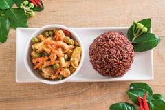 Κάρρυ Panaeng με το ρύζι χοιρινού κρέατος και μούρων Στοκ φωτογραφίες με δικαίωμα ελεύθερης χρήσης