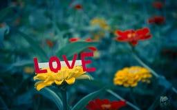 Κάρτα αγάπης επάνω από το λουλούδι Στοκ φωτογραφία με δικαίωμα ελεύθερης χρήσης
