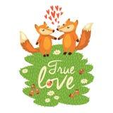 Κάρτα αγάπης με τις χαριτωμένες αλεπούδες στο διάνυσμα Στοκ Εικόνα