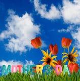 κάρτα γενεθλίων με την εικόνα ημέρας μητέρων \ «s της χλόης στενό σε επάνω κήπων Στοκ Εικόνες