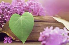 Κάρτα επετείου με διαμορφωμένο το καρδιά φύλλο και τα ιώδη λουλούδια Στοκ Εικόνες