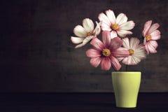 Κάρτα επετείου με τα λουλούδια στο βάζο Στοκ φωτογραφία με δικαίωμα ελεύθερης χρήσης