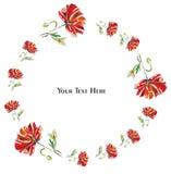 Κάρτα λουλουδιών με τις παπαρούνες σε μια άσπρη διανυσματική απεικόνιση υποβάθρου ελεύθερη απεικόνιση δικαιώματος