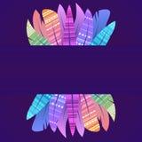 Κάρτα με τα πολύχρωμα φτερά boho των πουλιών με τη διακόσμηση και μια θέση για το κείμενο στο σκοτεινό υπόβαθρο ελεύθερη απεικόνιση δικαιώματος
