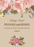 Κάρτα με τα τριαντάφυλλα και peonies Στοκ Εικόνα