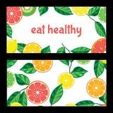 Κάρτα με τα φωτεινά φρούτα σε ένα άσπρο υπόβαθρο διανυσματική απεικόνιση