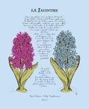Κάρτα με τα όμορφα λουλούδια και ποίημα από την κηλίδα Στοκ Εικόνες