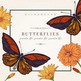 Κάρτα με τις πεταλούδες και τα λουλούδια Στοκ φωτογραφία με δικαίωμα ελεύθερης χρήσης