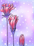 Κάρτα με το λουλούδι τριών χειμώνα Στοκ Εικόνες