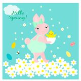 Κάρτα με το χαριτωμένο λαγουδάκι με το νεογέννητο κοτόπουλο Στοκ εικόνες με δικαίωμα ελεύθερης χρήσης