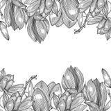 Κάρτα με το magnolia graphics συρμένο χέρι διανυσματική απεικόνιση