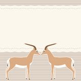 Κάρτα με δύο gazelles Στοκ φωτογραφία με δικαίωμα ελεύθερης χρήσης