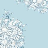 Κάρτα με chamomile Στοκ Εικόνα