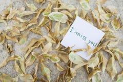 Κάρτα μηνυμάτων και ξηρό φύλλο Στοκ Εικόνες