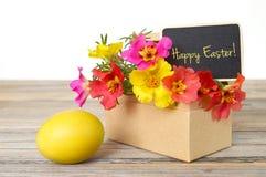 Κάρτα Πάσχας: Λουλούδια Πάσχας και κίτρινο αυγό Πάσχας Στοκ Φωτογραφίες