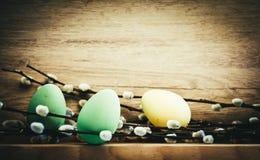 κάρτα Πάσχας με τα αυγά και ιτιά γατών στο αγροτικό ξύλινο backgrou Στοκ Εικόνα