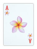 Κάρτα παιχνιδιού - άσσος των λουλουδιών στοκ φωτογραφίες