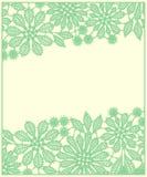 Κάρτα πράσινη δαντέλλα Στοκ Φωτογραφία