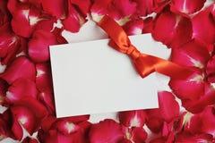 Κάρτα προτύπων στα κόκκινα ροδαλά πέταλα για την ημέρα βαλεντίνων ` s Επίπεδος βάλτε, τοπ άποψη με μια θέση για το κείμενό σας Στοκ φωτογραφία με δικαίωμα ελεύθερης χρήσης