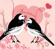 Κάρτα πρόσκλησης βαλεντίνων με το ζεύγος των πουλιών και τις καρδιές του lov Στοκ Εικόνες