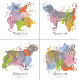 Κάρτα σκυλιών Στοκ εικόνα με δικαίωμα ελεύθερης χρήσης