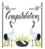 Κάρτα συγχαρητηρίων με τους κοινούς γερανούς, φτέρη και  Στοκ φωτογραφία με δικαίωμα ελεύθερης χρήσης