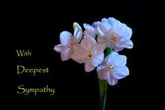 Κάρτα συμπόνοιας Στοκ Εικόνες