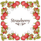 Κάρτα της φράουλας Στοκ φωτογραφία με δικαίωμα ελεύθερης χρήσης