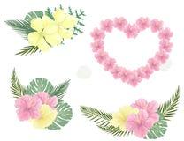 Κάρτα τη ρόδινη καρδιά λουλουδιών που διαμορφώνεται με με το κείμενο Ημέρα βαλεντίνων απεικόνισης Χαιρετισμός εορτασμού Τροπικό κ Στοκ φωτογραφίες με δικαίωμα ελεύθερης χρήσης