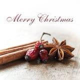 Κάρτα Χαρούμενα Χριστούγεννας διακοσμητική - η κανέλα και το σκυλί γλυκάνισου αυξήθηκαν Στοκ Εικόνα