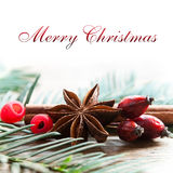 Κάρτα Χαρούμενα Χριστούγεννας διακοσμητική - η κανέλα και το σκυλί γλυκάνισου αυξήθηκαν Στοκ Εικόνες
