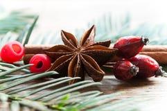 Κάρτα Χαρούμενα Χριστούγεννας διακοσμητική - η κανέλα και το σκυλί γλυκάνισου αυξήθηκαν Στοκ εικόνες με δικαίωμα ελεύθερης χρήσης