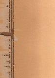κάρτα χαρτονιών copyspace Στοκ Φωτογραφία