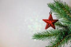 Κάρτα Χριστουγέννων, κλάδος χριστουγεννιάτικων δέντρων με ένα παιχνίδι στοκ εικόνες με δικαίωμα ελεύθερης χρήσης