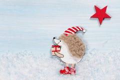 Κάρτα Χριστουγέννων με έναν σκαντζόχοιρο Στοκ φωτογραφία με δικαίωμα ελεύθερης χρήσης