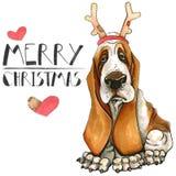 Κάρτα Χριστουγέννων με ένα σκυλί της φυλής κυνηγόσκυλων μπασέ Χριστούγεννα της Mary η ανασκόπηση απομόνωσε το λευκό απεικόνιση αποθεμάτων