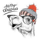Κάρτα Χριστουγέννων με την καμήλα στο χειμερινό καπέλο Χαρούμενα Χριστούγεννα που γράφει το σχέδιο επίσης corel σύρετε το διάνυσμ Στοκ εικόνα με δικαίωμα ελεύθερης χρήσης