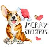 Κάρτα Χριστουγέννων χαιρετισμού με το corgi φυλής σκυλιών η ανασκόπηση απομόνωσε το λευκό καλή χρονιά απεικόνιση αποθεμάτων