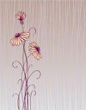 κάρτα floral διανυσματική απεικόνιση