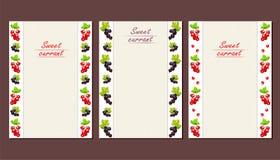 Κάρτες ή φυλλάδια με ένα κάθετο σχέδιο των μούρων σταφίδων διανυσματική απεικόνιση