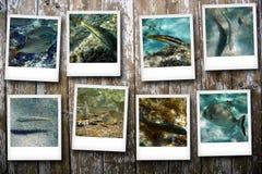 Κάρτες από τη θάλασσα Στοκ Εικόνα