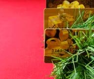 Κάρτες δώρων στους κλάδους χριστουγεννιάτικων δέντρων Στοκ Εικόνες