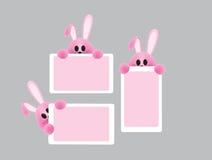 Κάρτες με bunny Στοκ φωτογραφία με δικαίωμα ελεύθερης χρήσης