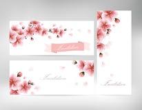 Κάρτες πρόσκλησης με ένα sakura ανθών για το σχέδιό σας Στοκ φωτογραφίες με δικαίωμα ελεύθερης χρήσης