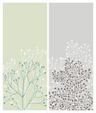 κάρτες floral Στοκ Εικόνα